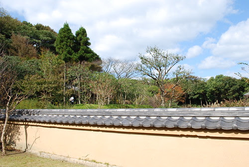 garden wall, autumn sky
