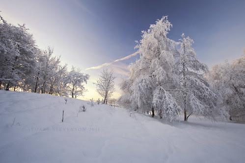 Snowdance by Stuart Stevenson