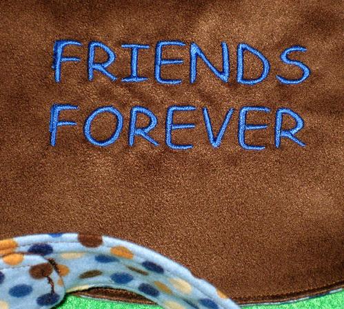 friends bib detail