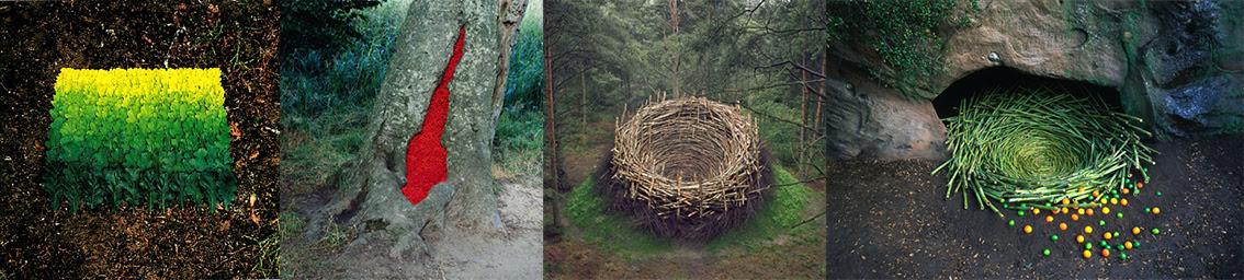 Oeuvres de Nils Udo - Land Art