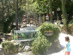 antikristo upright bbq and pestrofa trout argiroupoli hania-rethimno