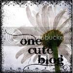 onecuteblog