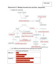 28 Part A Meiosis Concept Map - Maps Database Source