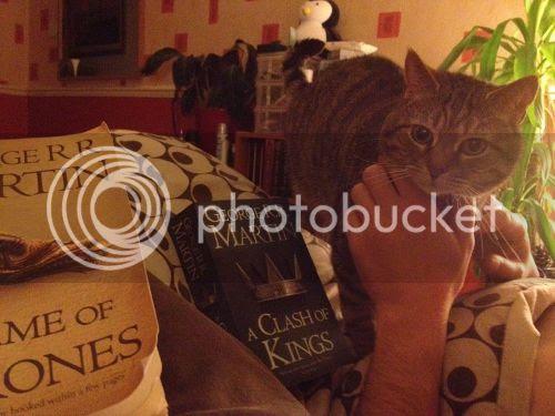 photo cat-and-books_zpsb81fb456.jpg