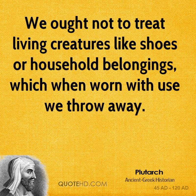 Plutarch Quotes Quotehd