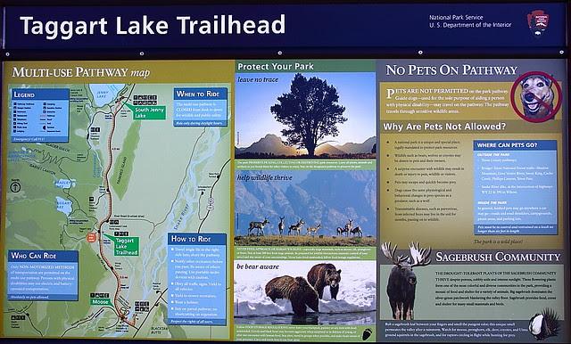 IMG_7797 Taggart Lake Trail
