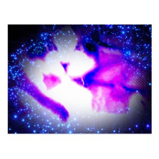 snowshoe toxic purple double vision kitty postcard