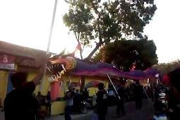 Ular Naga di Kirab Budaya Karnaval Tambakboyo Ambarawa Tahun 2018