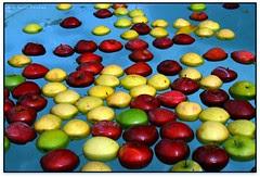 Els colors de les pomes, can Ribas, Bigues