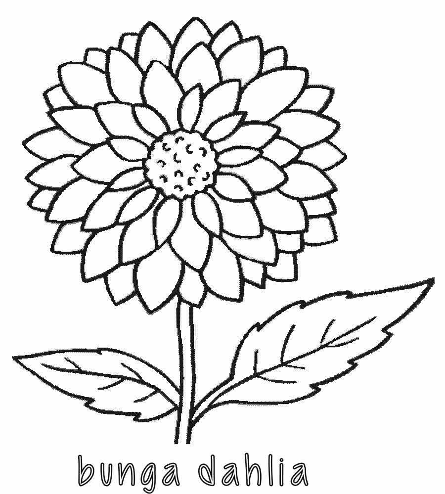Unduh 71 Gambar Animasi Bunga Hitam Putih Hd Free Gambar Animasi