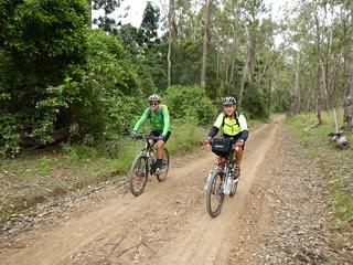 East Nanango Forest