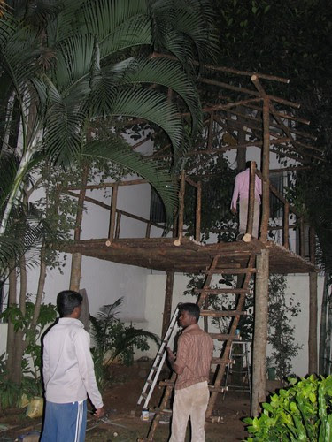 Tree_Top_House_Ladder