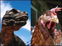 T. rex TV representation (BBC) and chicken (AFP)