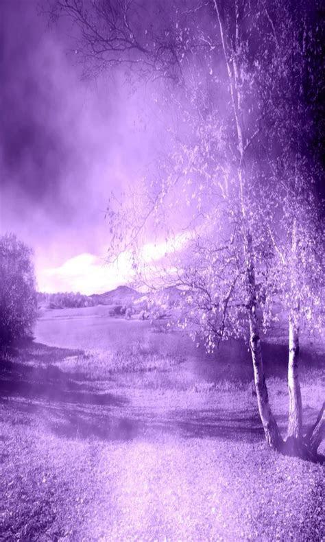 purple nature wallpaper wallpapersafari