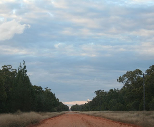 road to pilliga