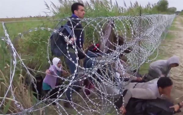 http://eliasbejjaninews.com/wp-content/uploads/2015/09/refugees-razor-wire-fence1.jpg