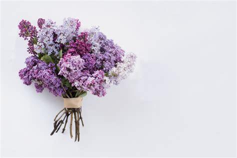Wedding Anniversary Gift Ideas by Year