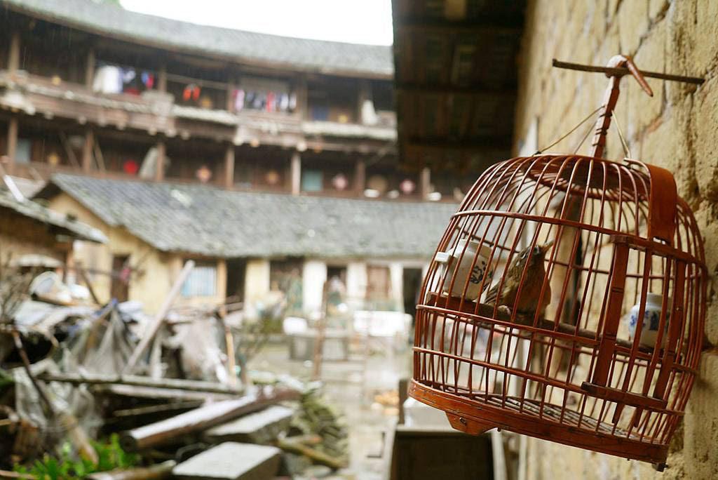 tulous Fujian china 22