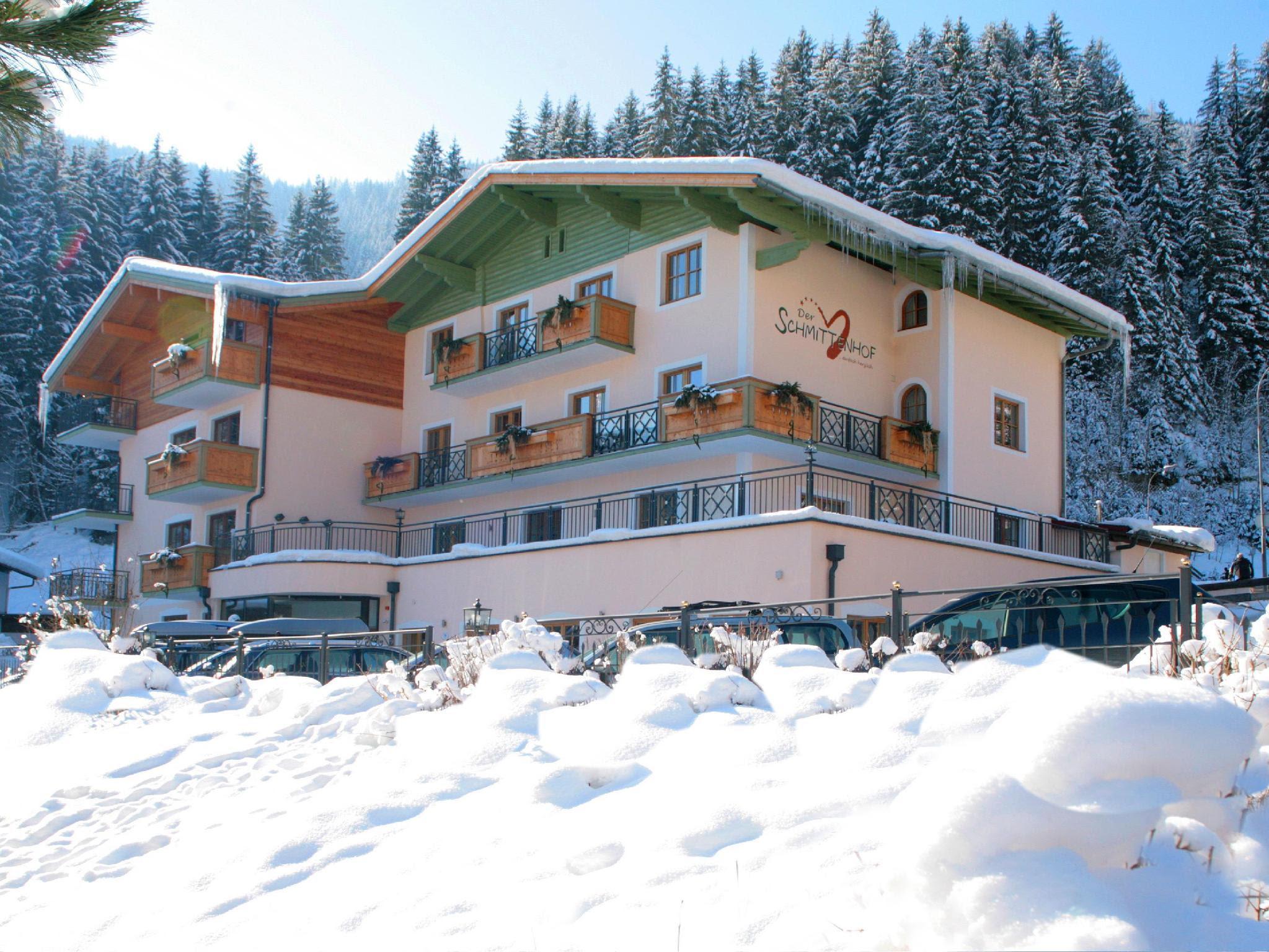 Hotel Der Schmittenhof Reviews