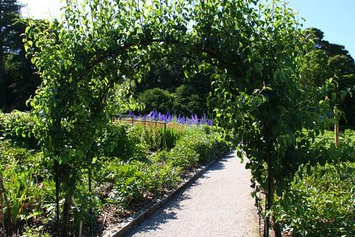 The Kitchen & Cutting Gardens at Chatsworth