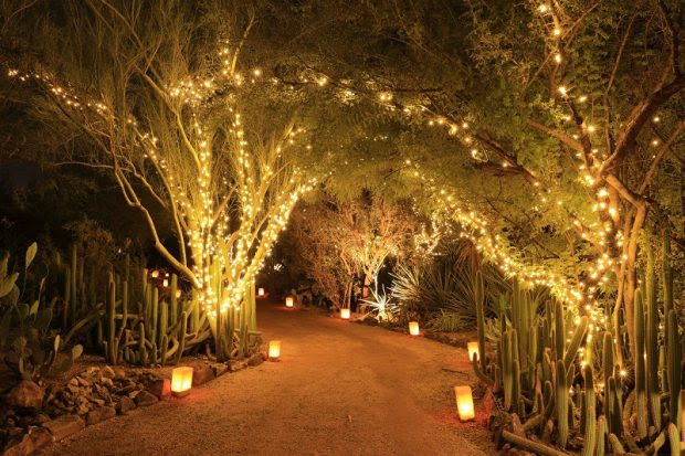 Garden Path Lights and Lighting Techniques Can Turn Your Garden into A Magical Land