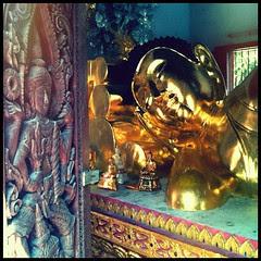 Someone is watching someone else sleep. #travel #buddha #thailand