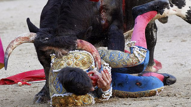 The young bullfighter, who was making his debut, suffered 8ins wounds as well as extensive cuts and bruises