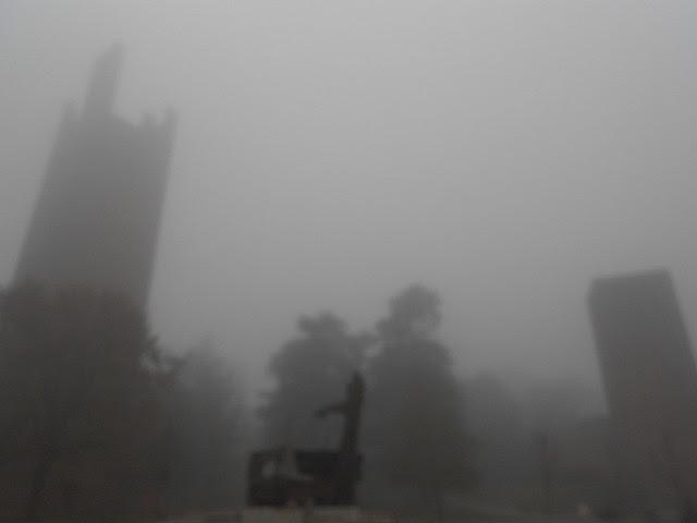 piazza Matteotti e nebbia, Rovigo