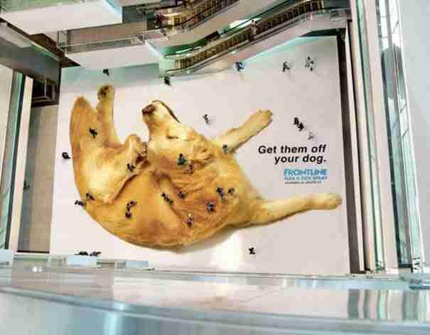 dinfo.gr - 25 έξυπνες διαφημίσεις που.. τραβούν την προσοχή!