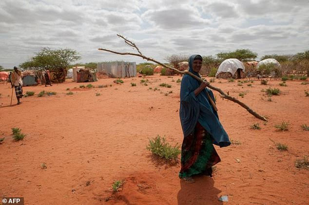 """The food is running out in about a month's time,"" Save the Children tells AFP about the drought devastating Ethiopia."