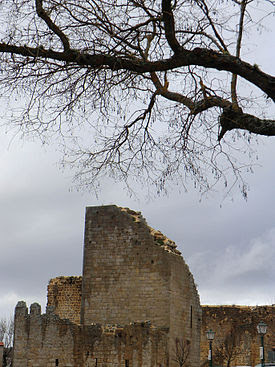 Castelo de Miranda do Douro 001.jpg