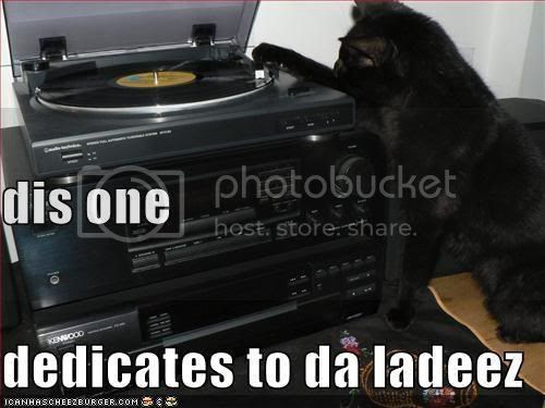 funny pictures cat dedicates a song dj cat