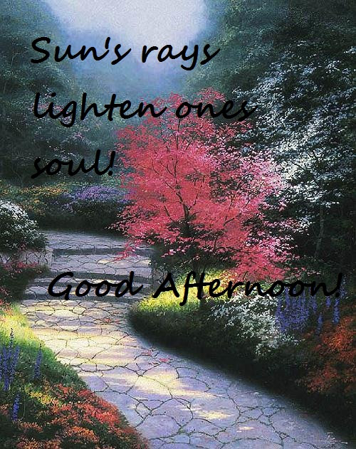 Good Afternoon Pictures Images Graphics Comments Scraps 60