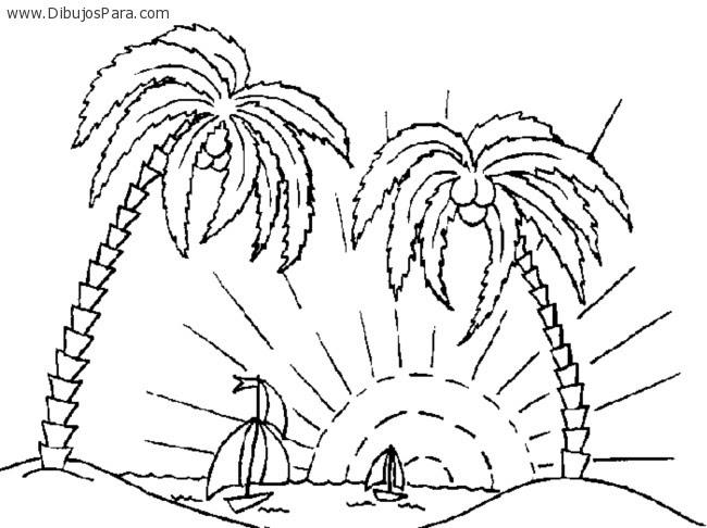 Dibujo De Palmeras Tropicales Dibujos Para Colorear