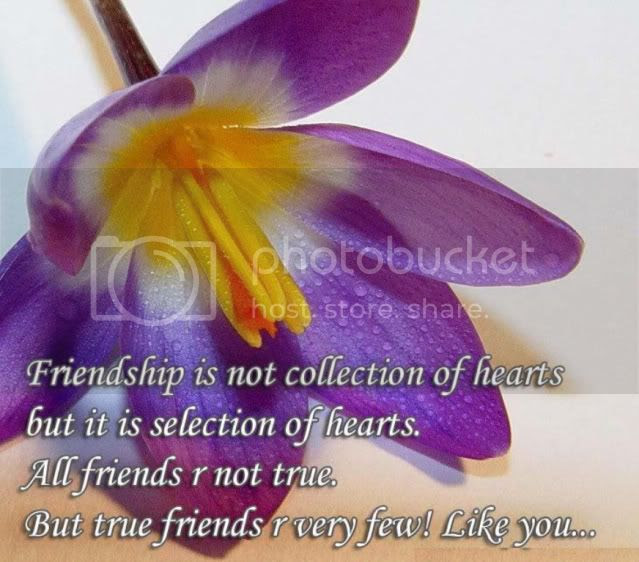 freinds quotes sayings Myspace Graphics Love Scraps