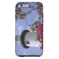 Caribbean, Puerto Rico, Viegues Island. The Tough iPhone 6 Case