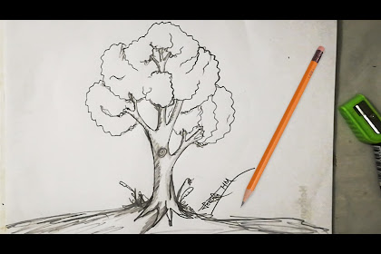 20+ Fantastic Ideas Simple Tree Pencil Drawing