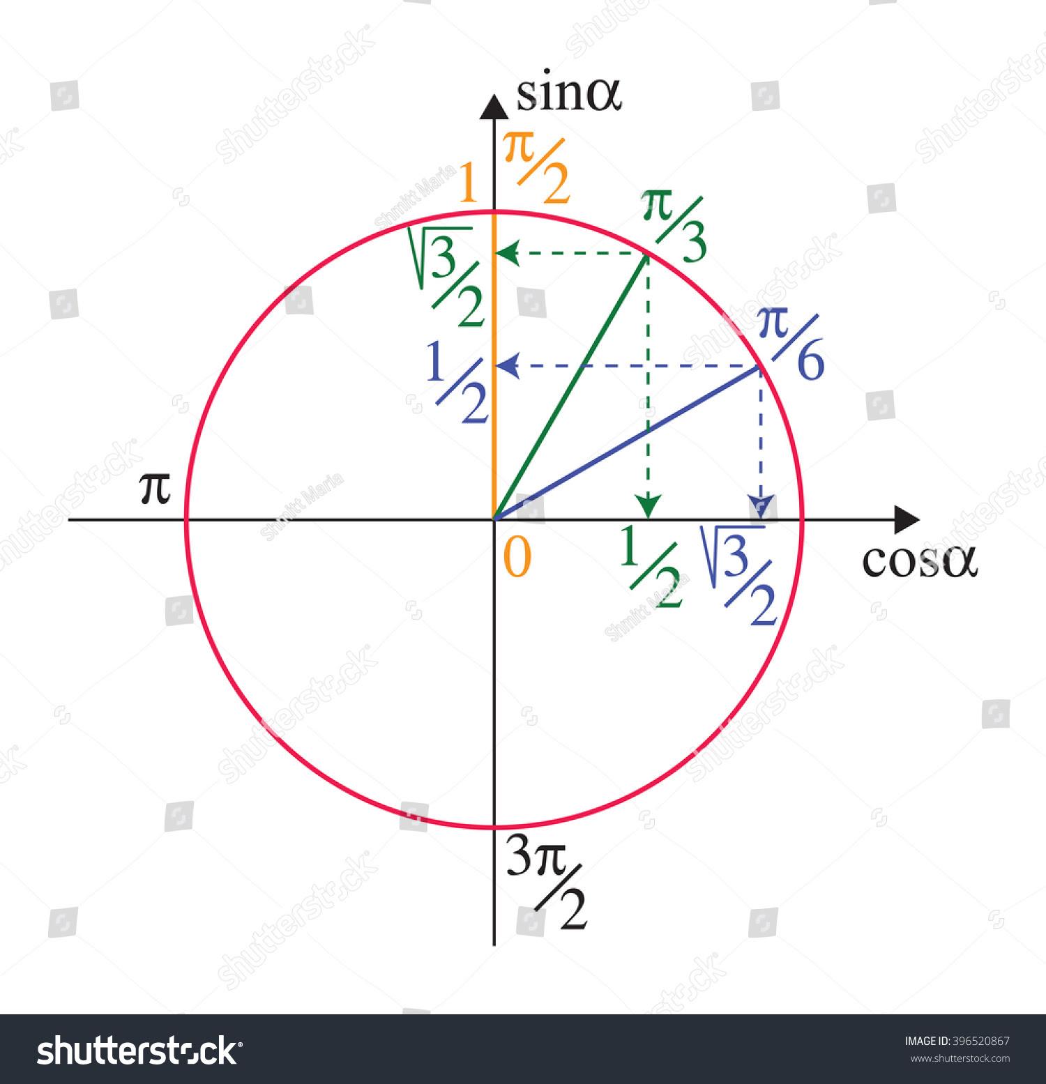 Trigonometric Unit Circle Stock Vector 396520867 - Shutterstock