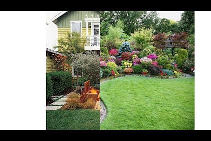 Garden Makeover Ideas Pictures