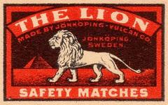 safetymatch101