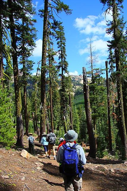 IMG_4643_2 Mill Creek Falls Trail, Lassen Volcanic National Park