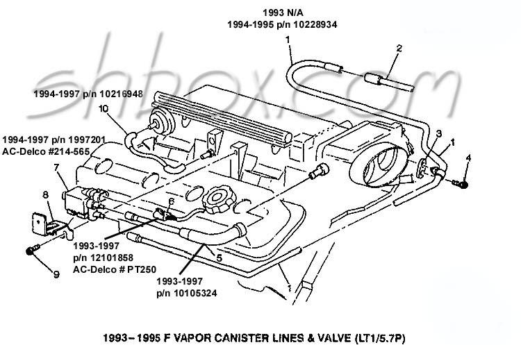 1995 Corvette Engine Diagram Wiring Diagrams Site Beam Popular A Beam Popular A Geasparquet It