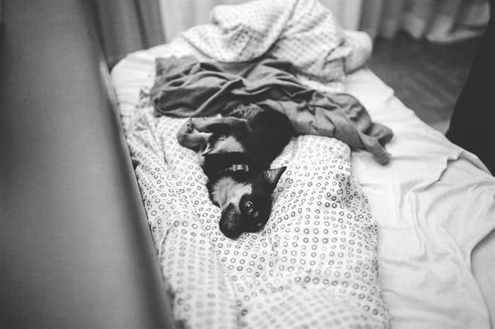 cosas no hacer antes de ir a la cama