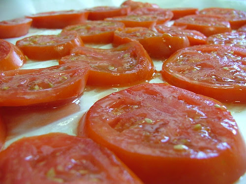 Daddy's Tomatoes
