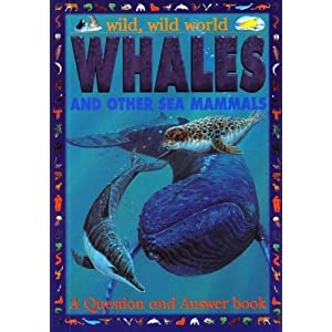 Whales And Other Sea Mammals Wild Wild World Of Animals