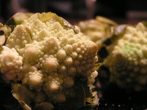 broccoli spiral