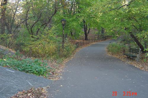 2008-12-05-apublicwalk.jpg