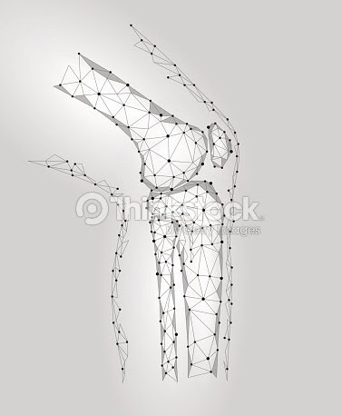 人間の膝関節の 3 D モデルはベクトル イラストです低ポリ デザイン未来
