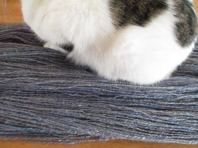 Penny likes this yarn