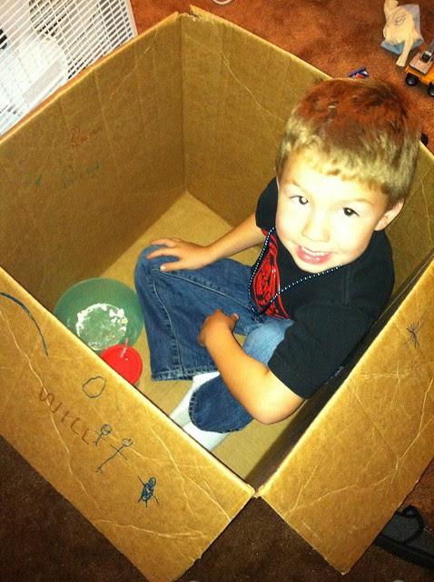 Will in a box